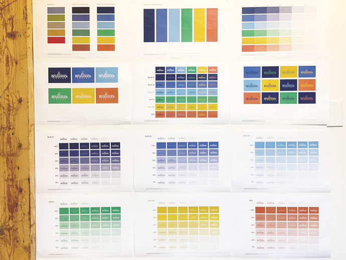 Colours swatches laid out on a wall. The colours range from yellow to red, to blue to purple to green.
