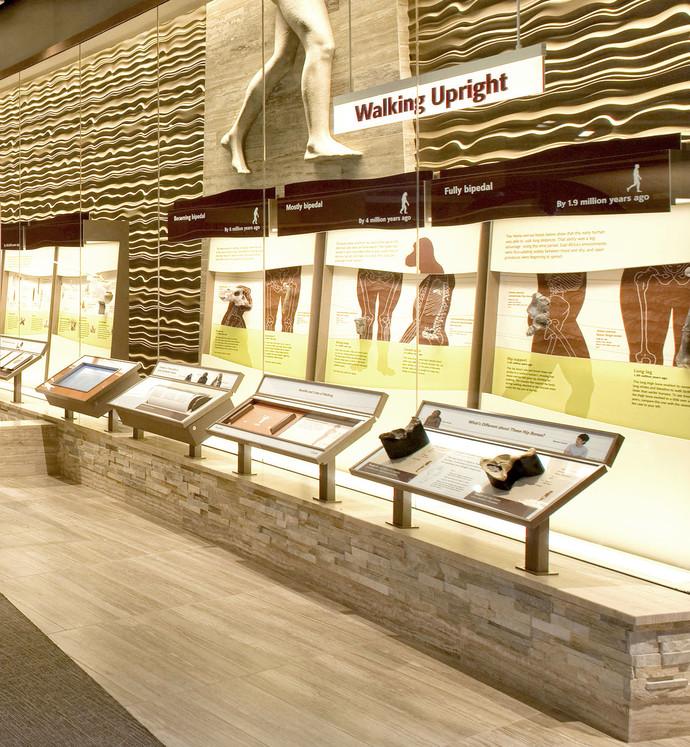 Photo from Exhibit